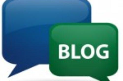 Article : Bloguer dans un pays du sud : le cas du Burkina Faso