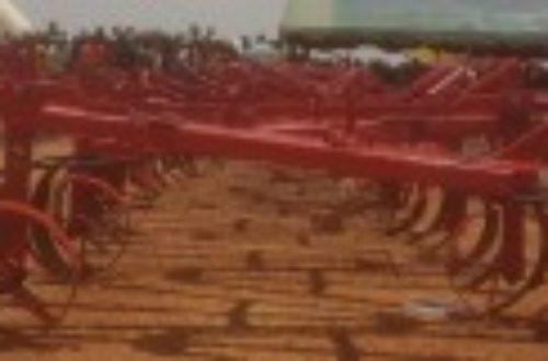 Article : Au Burkina, les jeunes veulent-ils vraiment devenir des paysans?