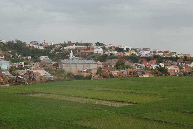 Les rizières côtoient les habitations