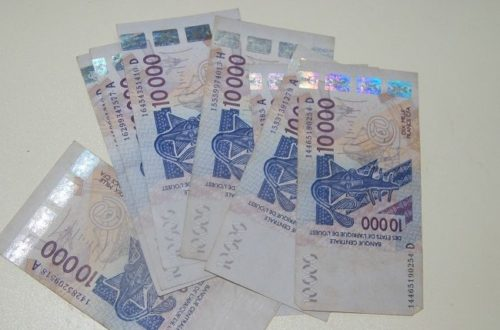 Article : En Afrique, on ne donne pas le Franc CFA avec la main gauche